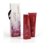 Joico Color Endure Duo 2013